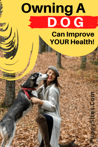 Owning a Dog Can Improve Your Health