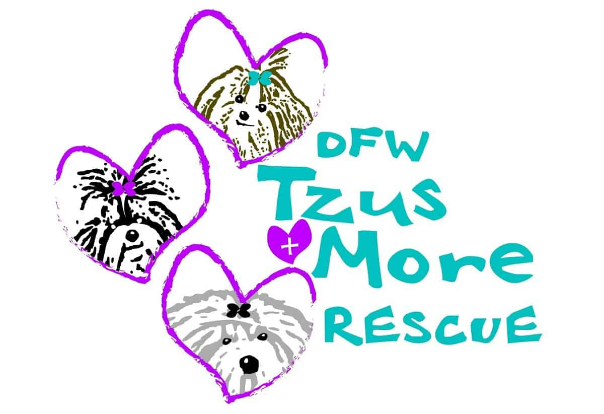 DFW Tzus and More Rescue