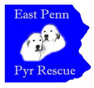 East Penn Pyr Rescue