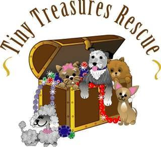 Tiny Treasures Rescue